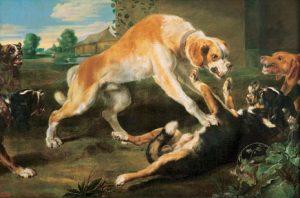 honden corigeren elkaar