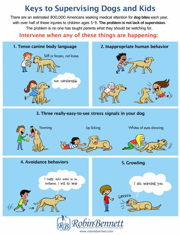 Honden en Kinderen begeleiden
